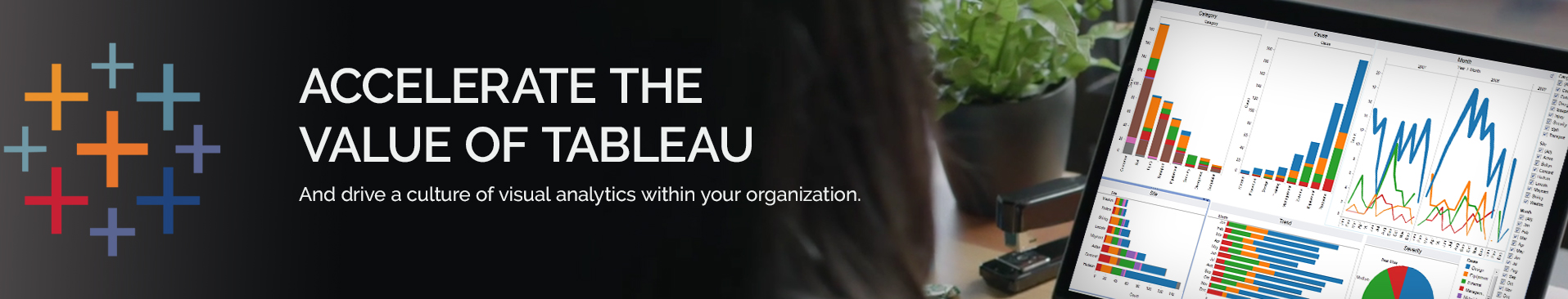 Tableau Consulting header